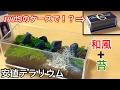 【安値テラリウム】コレクションケースと、苔でテラリウム