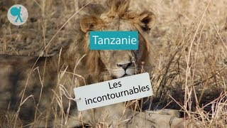 Tanzanie - Les incontournables du Routard