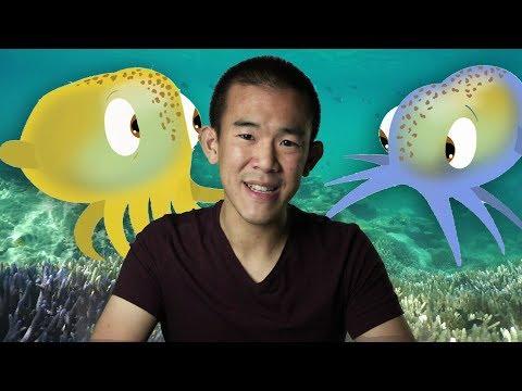 Nature's Cutest Symbiosis: The Bobtail Squid | I Contain Multitudes