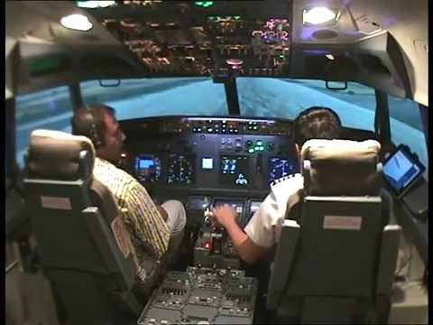 Boeing 737-800 Flight Simulator (1)