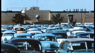 This is Los Angeles Your Blue Chip Market 1954
