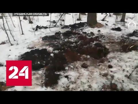 Дело Сети: за что расправились с Екатериной Левченко - Россия 24