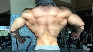 TOP 10 Insane V- TAPER Physiques (Part 1)
