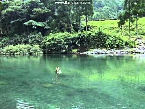 Sakura Fishing - Reel Fishing II Part 23