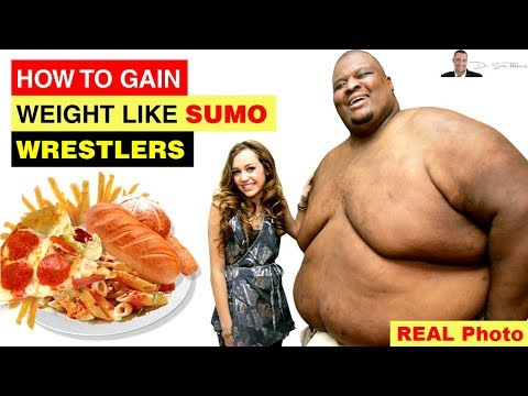 🤼 Sumo Wrestlers, Gaining Weight & Intermittent Fasting