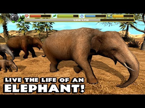 🐘Elephant Simulator Live And Experience Dangerous Life Of An African Elephant