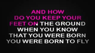 SC1007 07 Evans, Sara Born To Fly [karaoke]