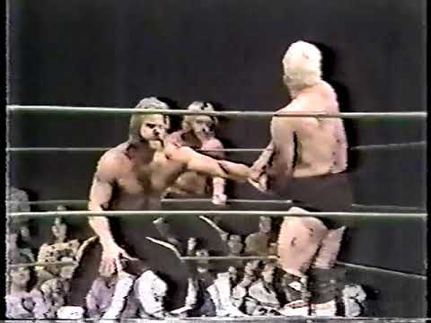 Memphis Wrestling November 13 - November 27, 1982 (Louisville Airdates)