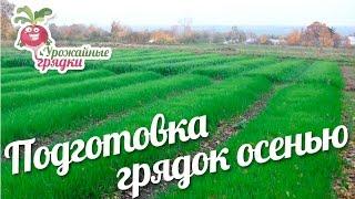 Подготовка грядок осенью #urozhainye_gryadki