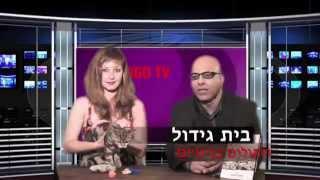 ערוץ -14 צילום וידאו לעסקים| תכניות טלוויזיה |החתול הבריטי| דודי לוין