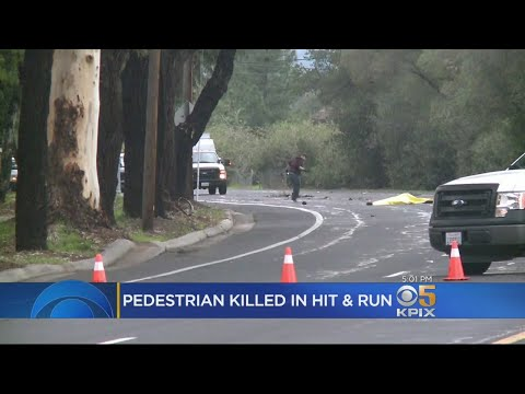 Pedestrian Killed In San Jose Hit-And-Run Collision