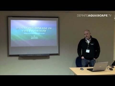 Managing disease in the fishroom - lecture by Paul Butler