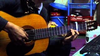 [Guitar Cover] - Tình Yêu Màu Nắng - Trantu Hoshi