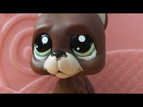 Littlest Pet Shop: Best Friends (díl #6: sen či nesen?)