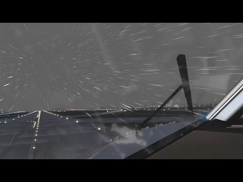 THE BEAUTY OF X-PLANE 11