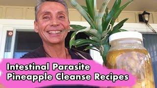 Intestinal Parasite Pineapple Cleanse Recipes I Dr Robert Cassar