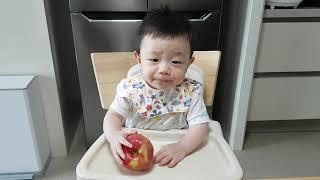 8개월 아기# 이유식 먹기, 쇠고기 표고버섯 양파죽 |…
