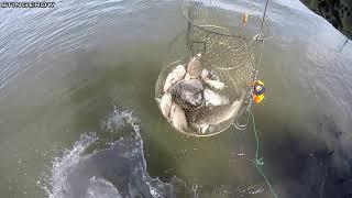 Ловим рыбу Жарим рыбу с картошкой Рыбалка в Астрахани