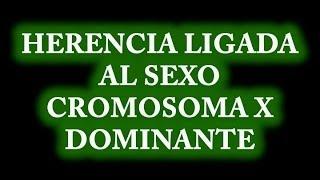 Herencia Ligada al Sexo:  Cromosoma X Dominante