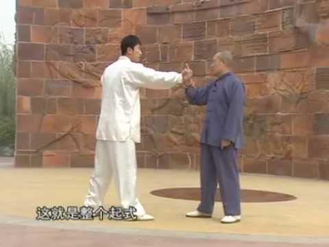 Yang Tai Chi combat tutorial