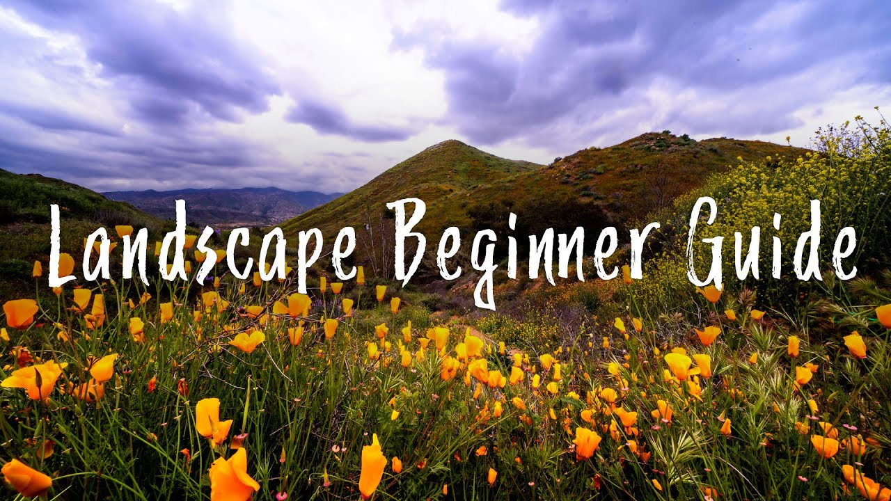 Landscape Photography Tips  A Beginners Guide Part 1