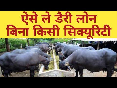 ऐसे मिलेगा पशुपालन लोन|How to get #Loan Subsidy For Dairy Farm from Nabard|Mudra loan