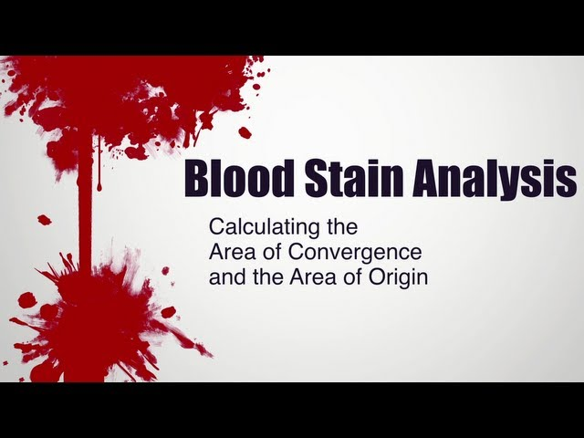 The Fascinating Physics Of Blood Splatters