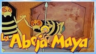 La abeja Maya - episodio 52 - Maya vuelve a casa  - capitulos completos en español latino