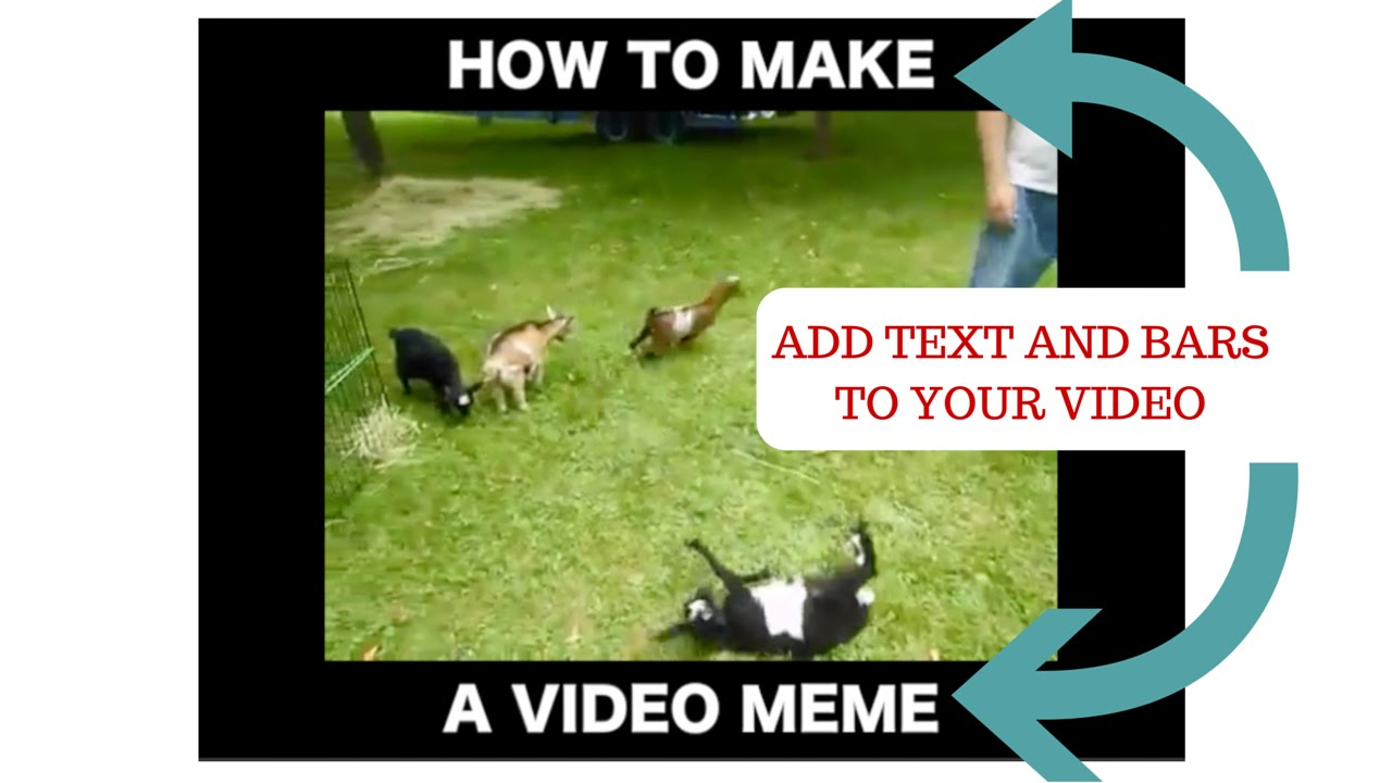 maxresdefault how to make a video meme video meme generator in any video