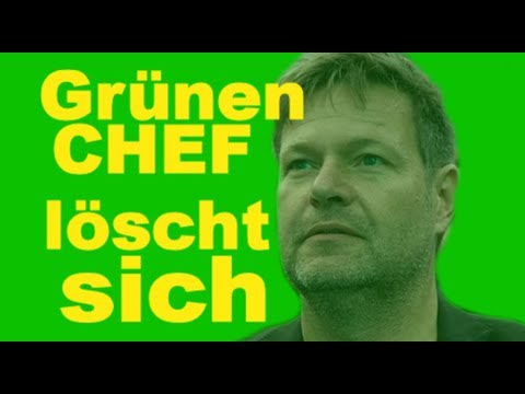 GRÜNEN CHEF :