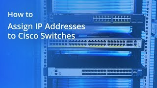 How to Assign IP Addresses to Cisco Switches | FS