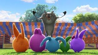 Солнечно Зайчики - Волк с Луны |  Забавные мультфильмы для детей | WildBrain
