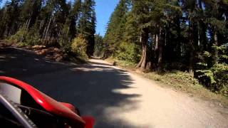 "Dual Sport Ride In The Olympic National Forest Accross The ""high Steel Bridge"""