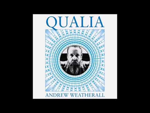 Andrew Weatherall - Saturday International
