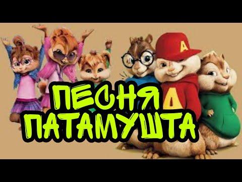 Песня ПАТАМУШТА голосами БУРУНДУКОВ!