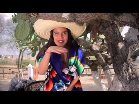 Los Colonchos - El Chango Vídeo Oficial 2017 (Merequetengue)