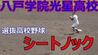 【シートノック】八戸学院光星 2019年 選抜試合前 シートノック