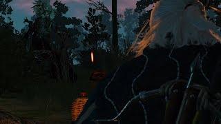 Ведьмак 3: Дикая Охота. Заказ: Лешачиха