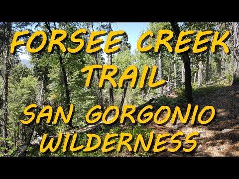 Hiking Forsee Creek Trail