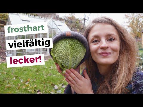 """❄️ Winterliche Gartentour: Gemüsegarten im Winter nutzen statt """"winterfest machen"""""""