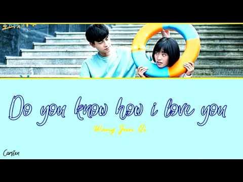 ● Do You Know How I Love You ● Wang Jun Qi (Chi/Pinyin/Eng)