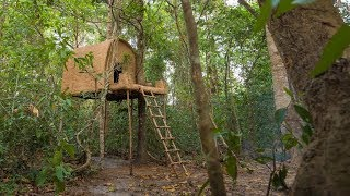How to Build The Most Incredible Jungle Tree house by Ancient Skills