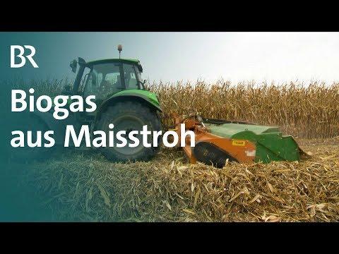 Doppelte Nutzung: Biogas aus Maisstroh | Unser Land | BR Fernsehen
