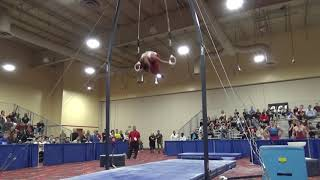 Yul Moldauer - Still Rings - 2019 Winter Cup Senior Prelims