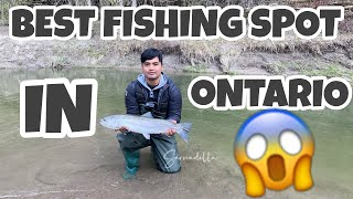 BEST FISHING SPOT IN ONTARIO