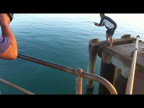 Fishing Seisia Wharf Cape York 2015