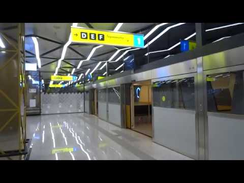 Мувер «Межтерминальный переход» в аэропорту Шереметьево // People mover in Sheremetyevo Airport