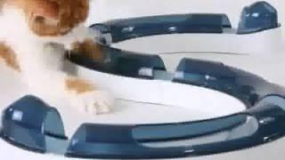CATit - интерактивные игрушки для кошек