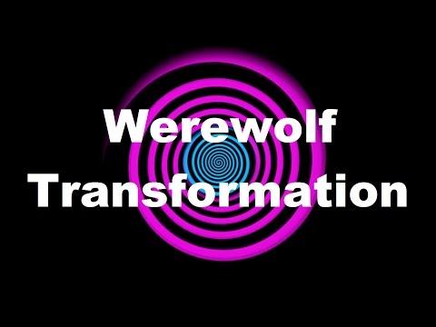 Werewolf Spell | FunnyDog TV