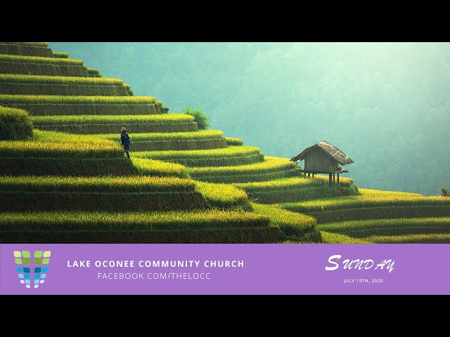 The Wheat from the Chaff - Sunday July 19th - Lake Oconee Community Church
